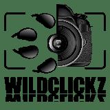 Wildclickz Logo